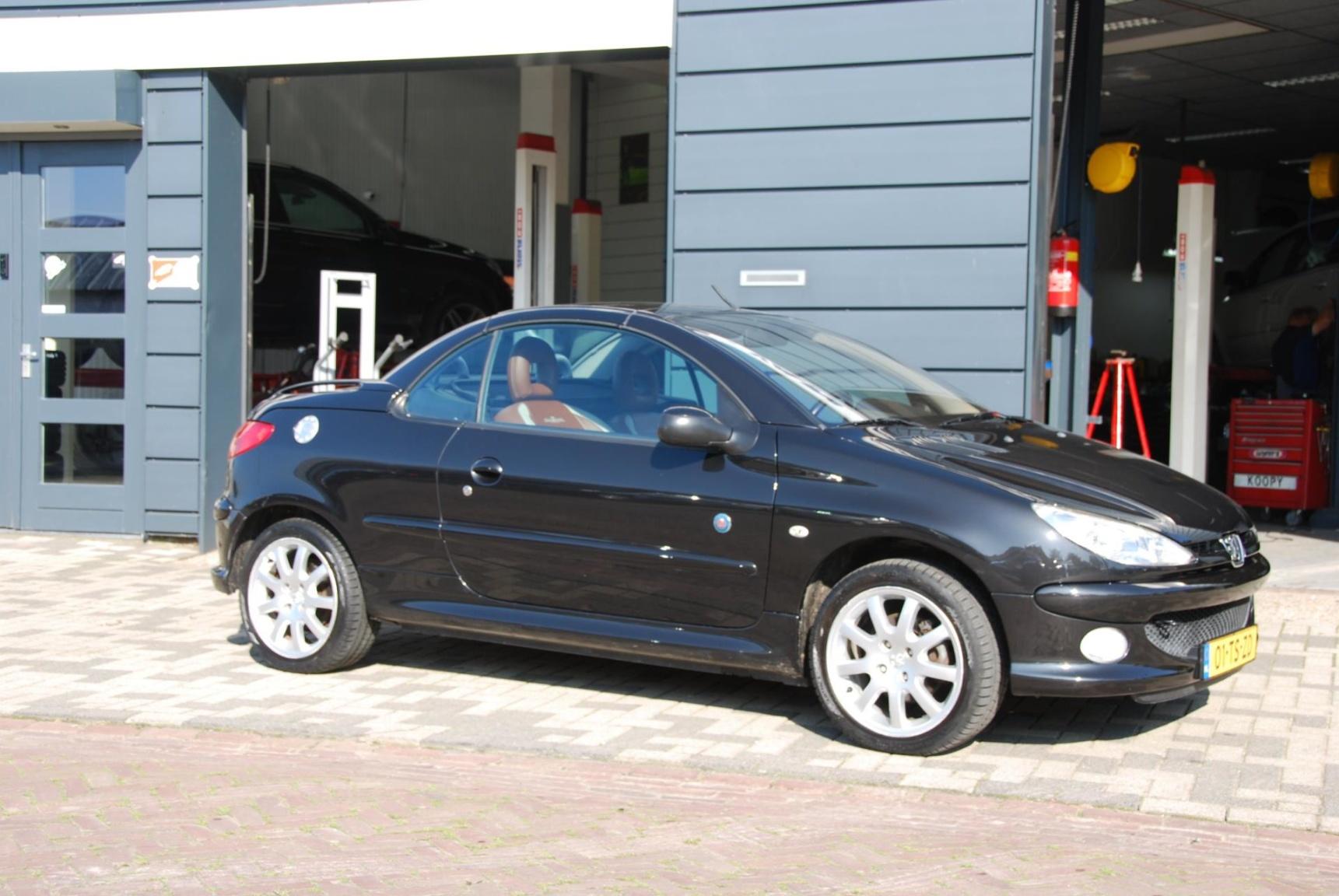 Peugeot-206-1